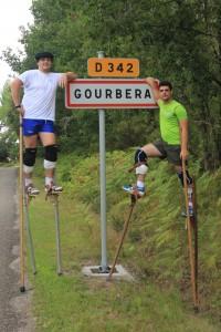 IMG_9796 gorbera